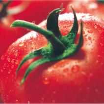 小松特産 まるごとトマトジャム
